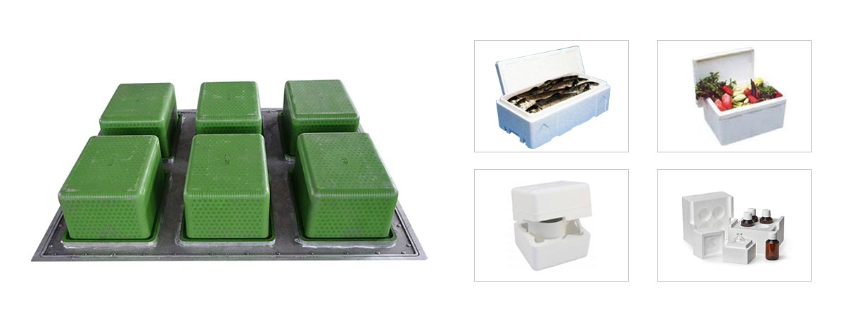 EPS Foam Fruit Fish Box Mould