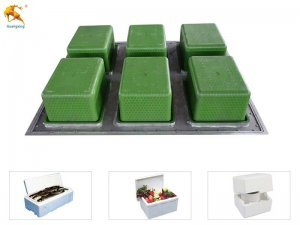 EPS Foam Fruit Fish Box Mould