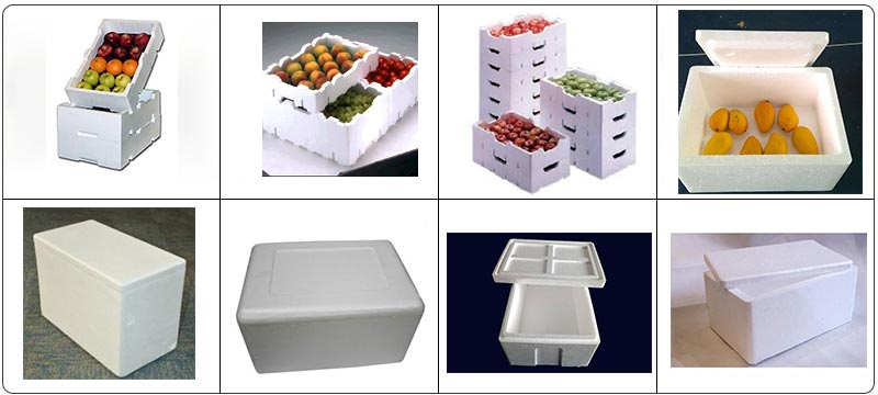 EPS Foam Fruit Box