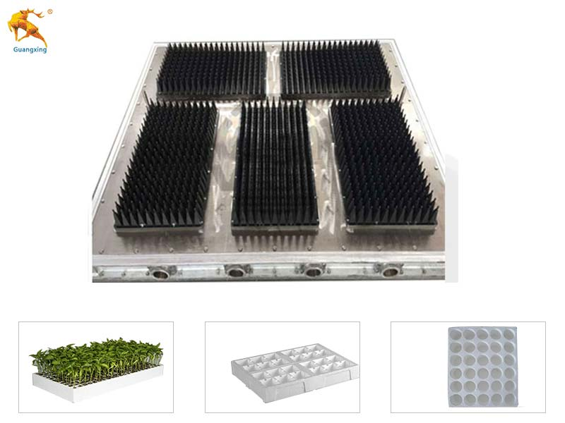EPS Seedling Tray Mould