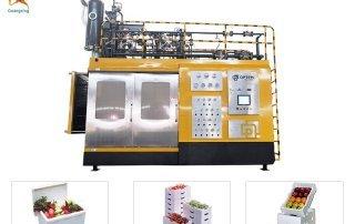 Fruit Box Styrofoam EPS Shape Moulding Machine